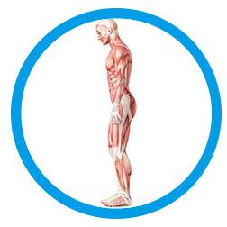 Patologie muscolari